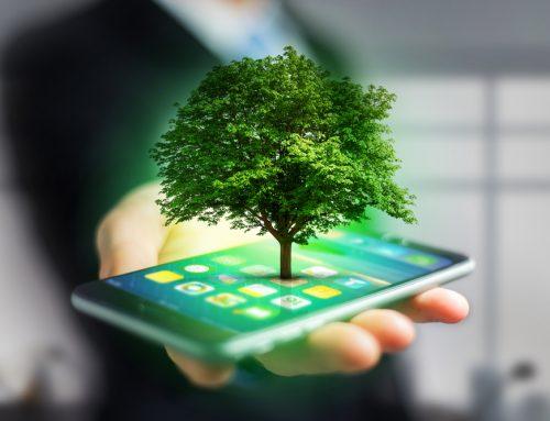Descubre la nueva tendencia ecológica